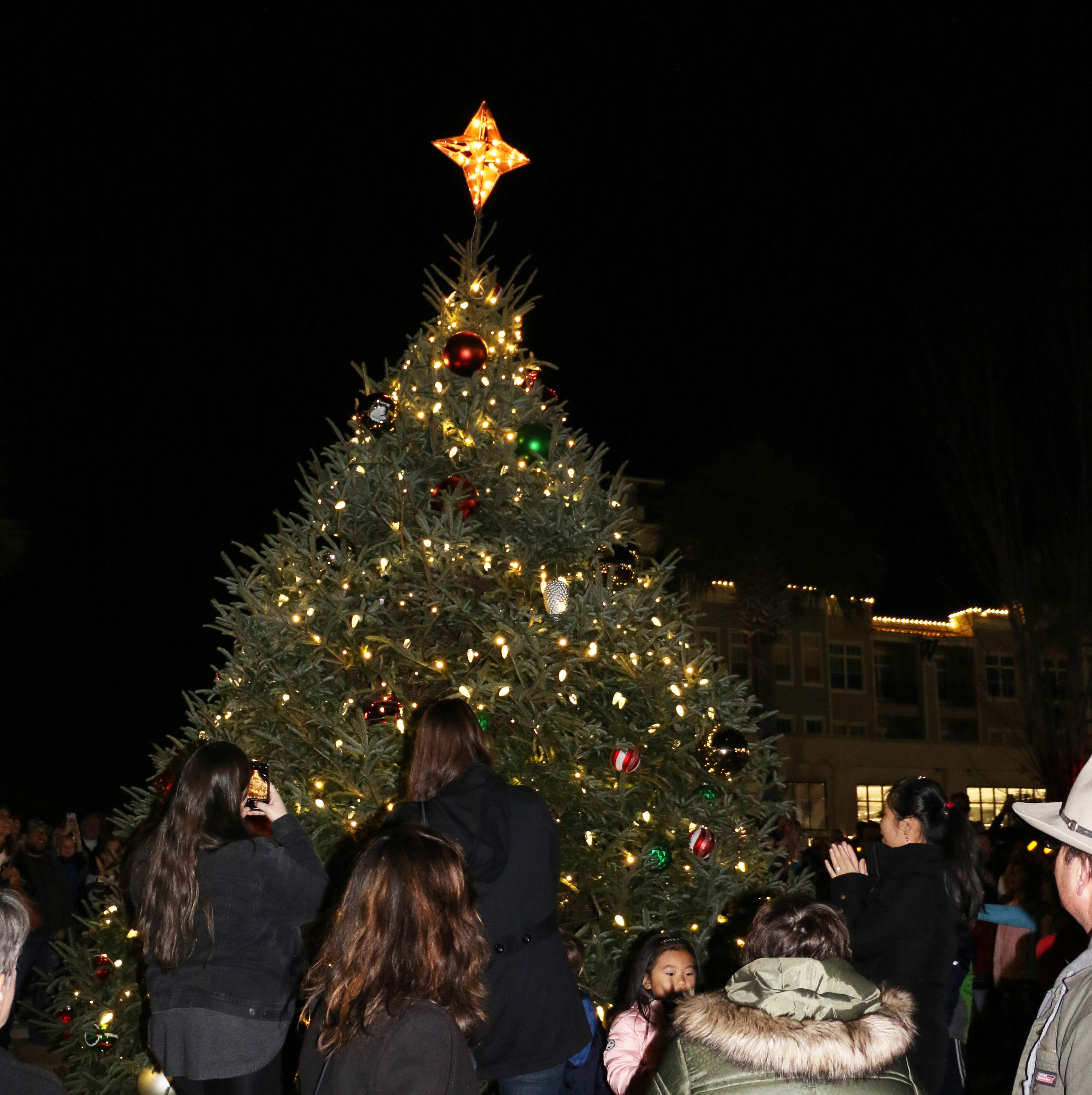 Revelers take pictures with the newly lit tree.