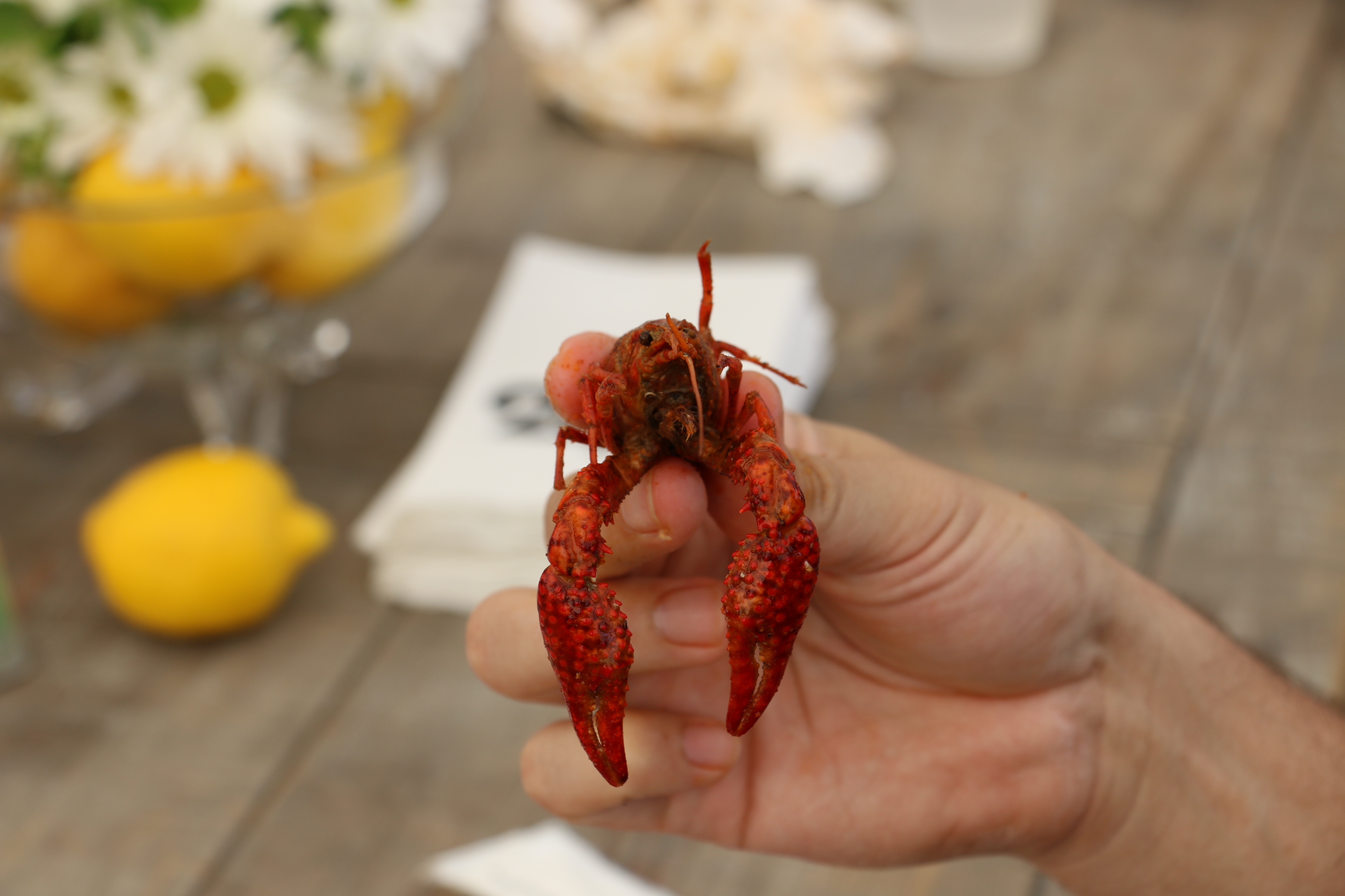 Guests enjoyed crawfish!