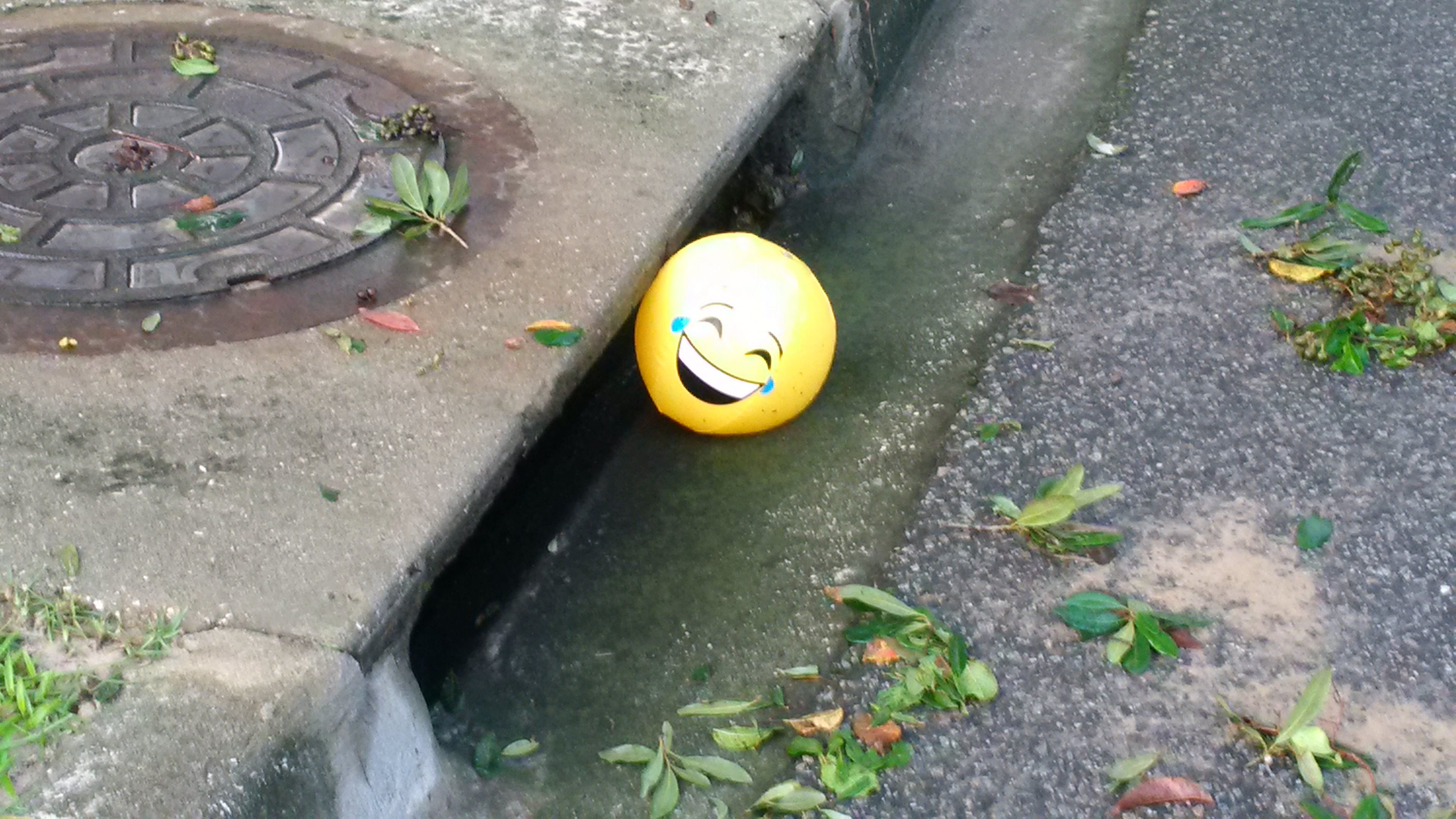 Hurray – Irma is gone! This smiling ball ended up in a storm drain on Jenny's Street the morning after the hurricane.