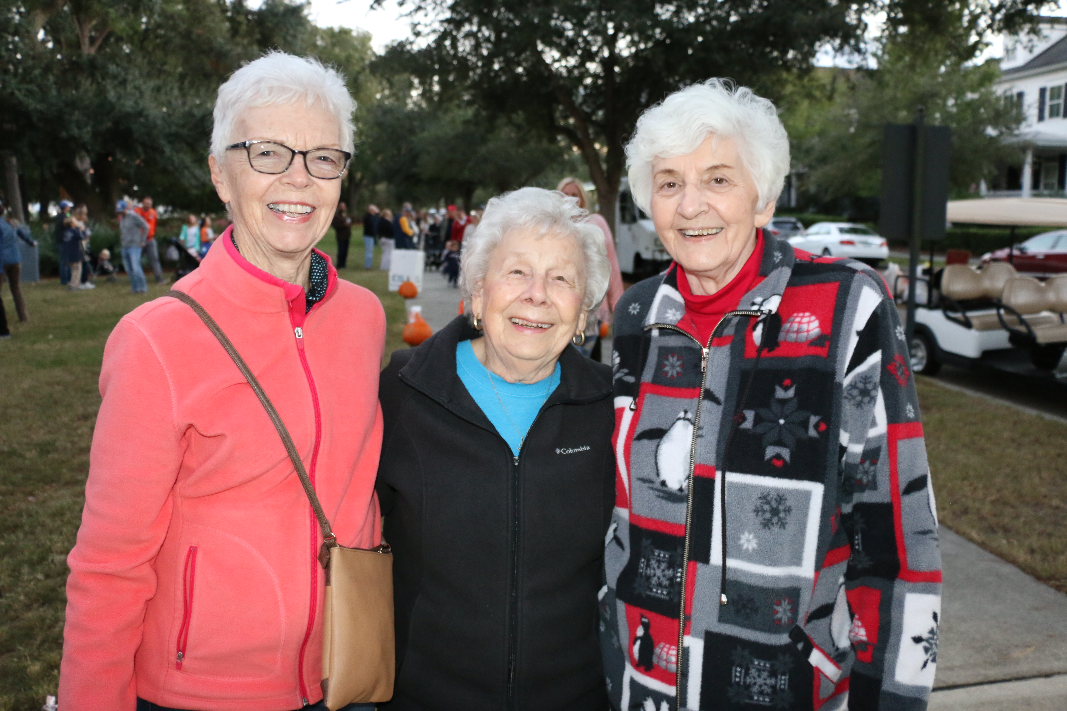 Daniel Pointe residents Linda McDonald, Mary Koschoff and Emie Mehard were among many viewing the sparkling displays.