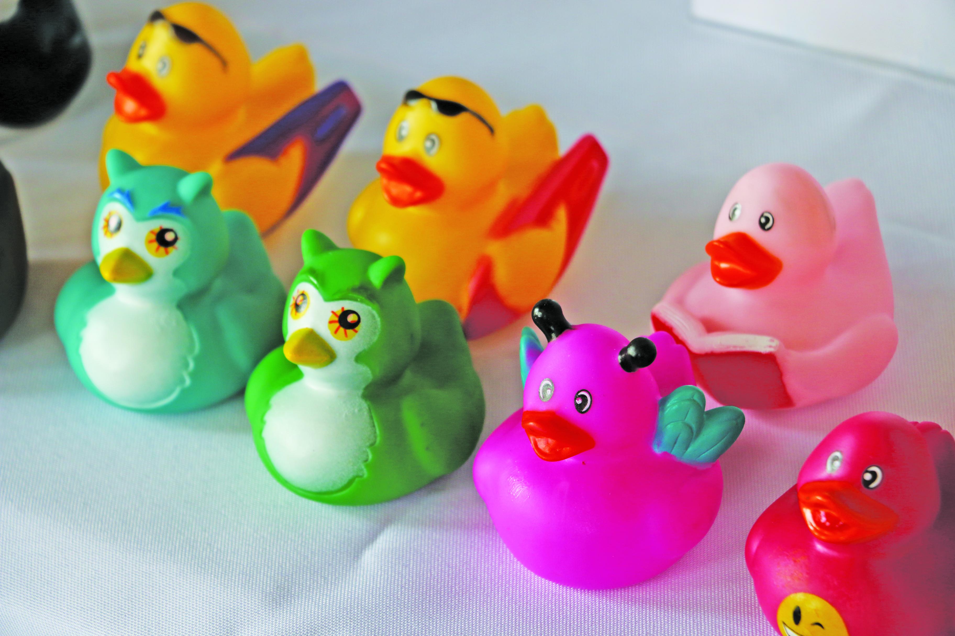 """A few """"sitting"""" ducks!"""