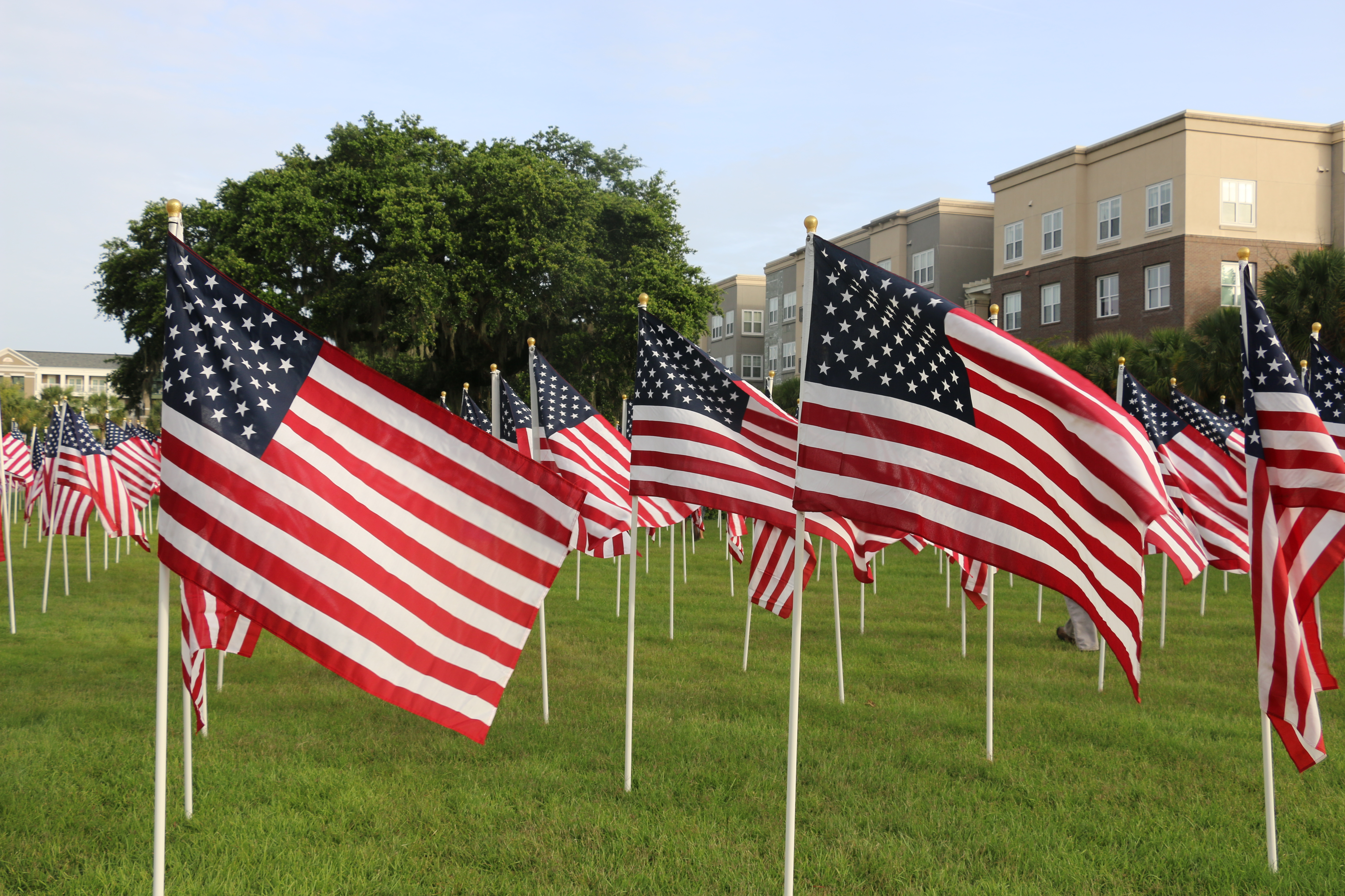 Flags wave from the Field of Honor!