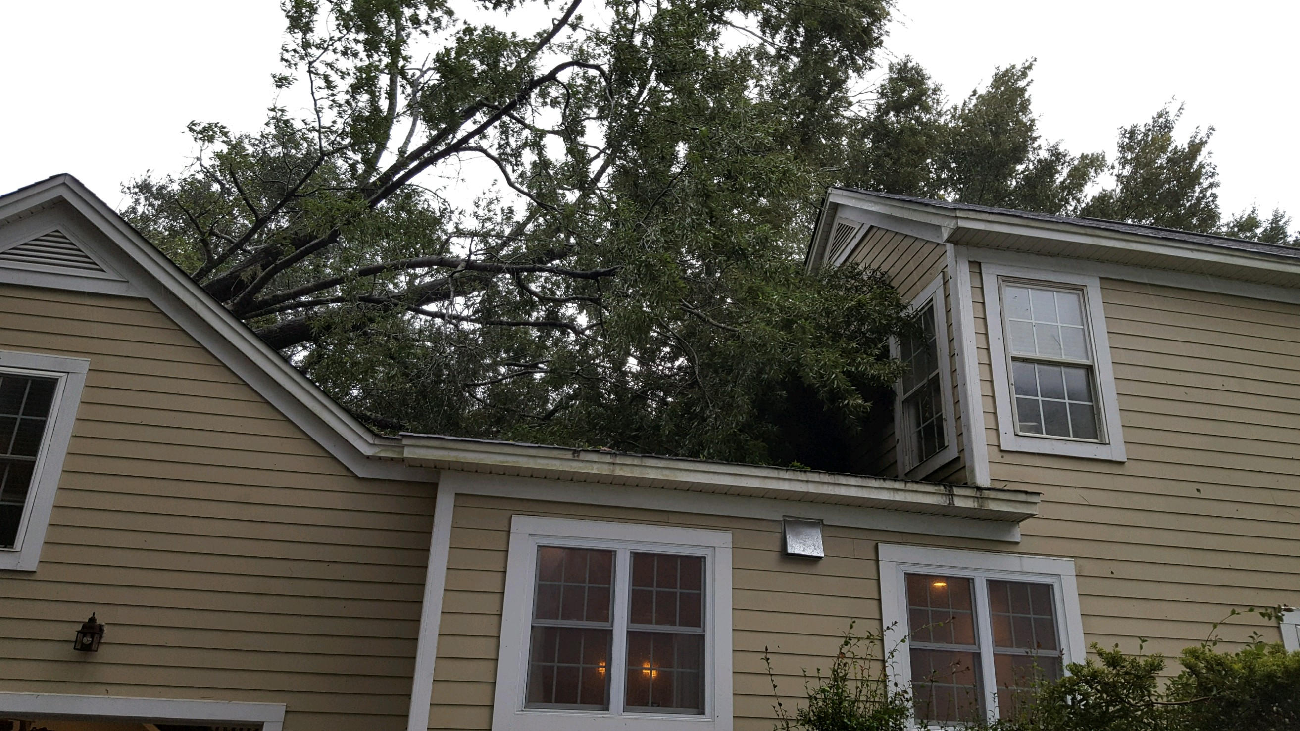 A tree falls onto a home on Corn Planters Street.