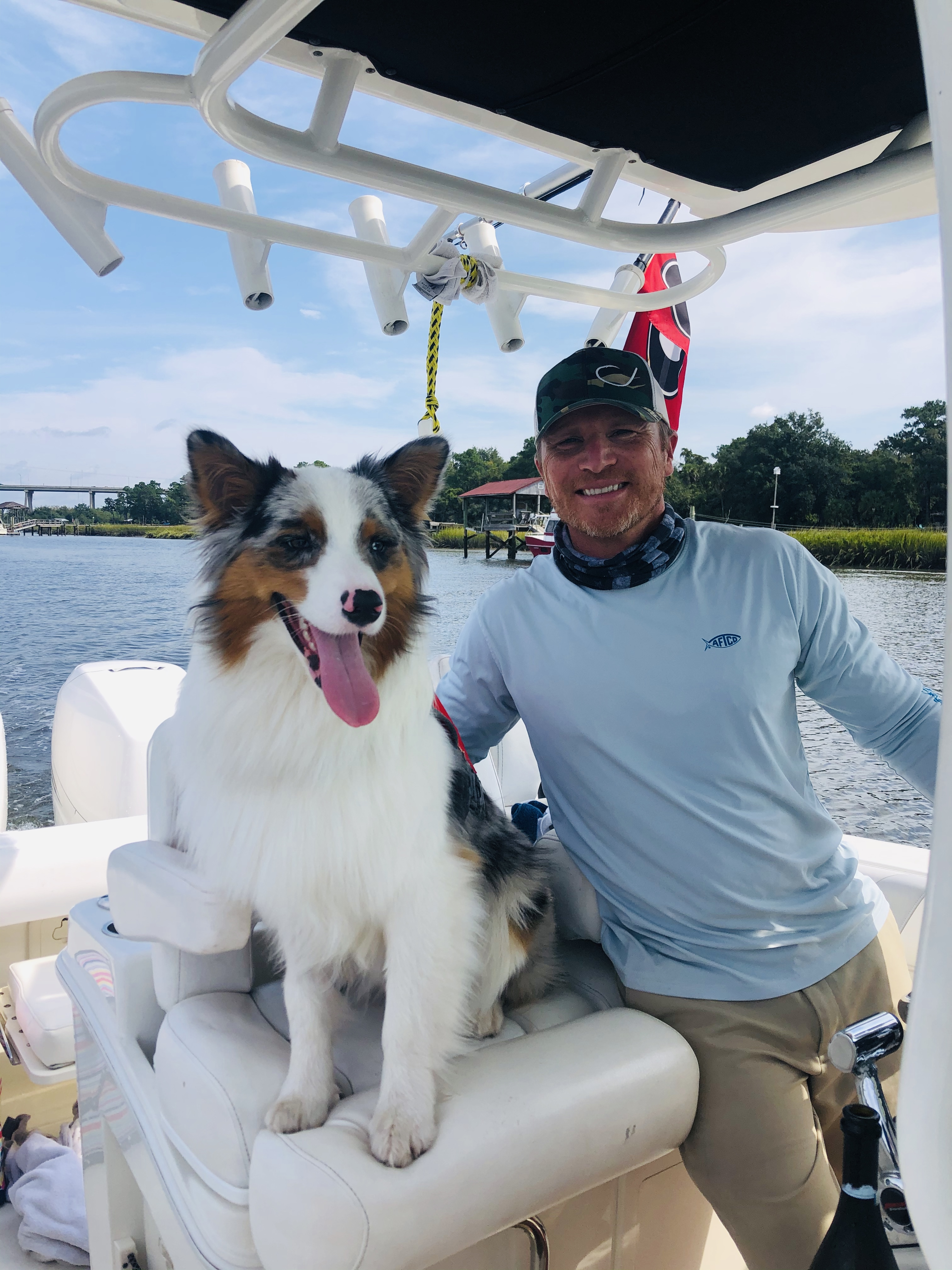 """Christy Winer sent this photo of Scout, a 1½-year-old Australian shepherd. """"He enjoys opening doors, chewing your shoes, stealing our daughter 's blanket, boat rides and playing Frisbee. He's a handful, but we love him!"""""""