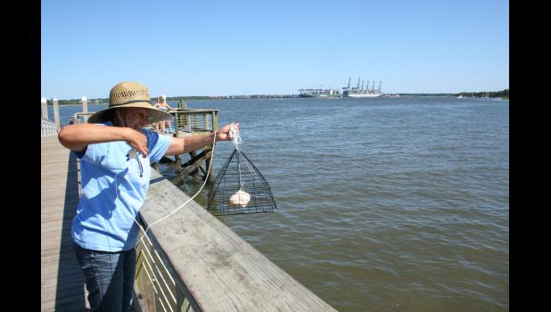 The Lure Of Pier Fishing For Local Anglers The Daniel Island News